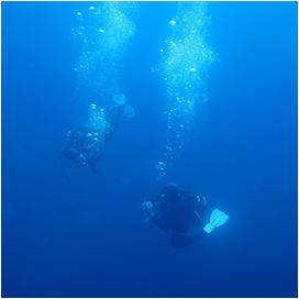 Deux plongeurs partent pour la formation de scaphandrier